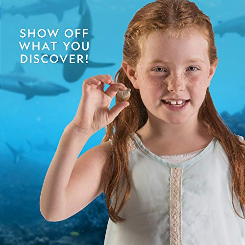 Product Image 5: National Geographic Shark Tooth Dig Kit, Excavate 3 Real Shark Fossils Including Sand Tiger, Otodus and Crow Shark – Great Science Gift for Marine Biology Enthusiasts of Any Age