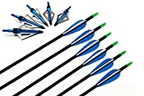 I-sport 32' Archery Fiberglass Targeting Arrows with...