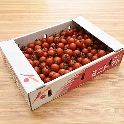 熊本県産 ( 九州 ) ミニトマト 1ケース 3kg 新鮮 生 産地直送
