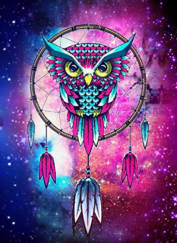 AIWO Diamond Painting Kits for Adults DIY 5D Round Full Drill Acrylic Paint by Diamonds for Home Wall Decor -Dreamcatcher Owl 12' X 16'