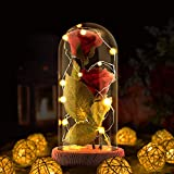Enchanted Rose Light Lamp, Beauty and the Beast Rose in Glass Dome,2 Pcs Red Silk Rose Led Lamp with 20 Led Light Powered by Battery, Gift for Birthday Wedding Anniversary Valentine's Day Decoration
