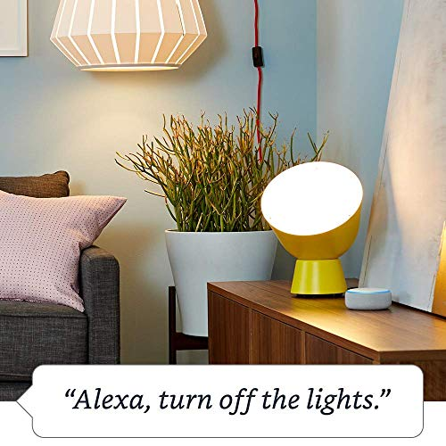 Amazon Smart Plug, works with Alexa - A Certified for Humans Device