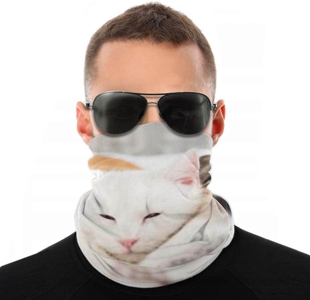 Headbands For Men Women Neck Gaiter, Face Mask, Headband, Scarf Close White Cat Loving Boxer Mix Turban Multi Scarf Double Sided Print Head Bandana For Women For Sport Outdoor