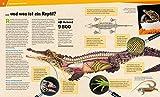 20 Reptilien und Amphibien. Gecko, Grasfrosch und Waran - 4