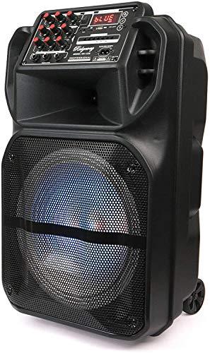 "Ridgeway 15"" Rechargeable Bluetooth Party DJ Speaker Multi-Lights Speaker 3600m Ah Batteries Powerful 4000 Watts Speaker"