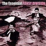 Essential Pansy Division (Bonus Dvd)