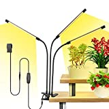 YGROW 100W Grow Lights for Indoor Plants, Tri Head 60 LED 6 Dimming Levels LED Grow Light with Adjustable Gooseneck Full Spectrum Grow Lights for Seed Starting, 3 Switch Modes, Auto Turn ON/Off Timing
