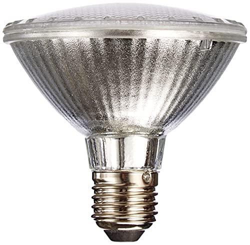 LAES Par 30LED Lampe E27, 10W, grau, 95x 94mm