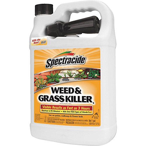 Spectracide Weed & Grass Killer Rtu 1 Gal