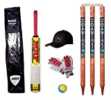 Swastik Wooden Cricket with Wooden Stump, Ball, Gloves Play Set for Children with Accessories and...