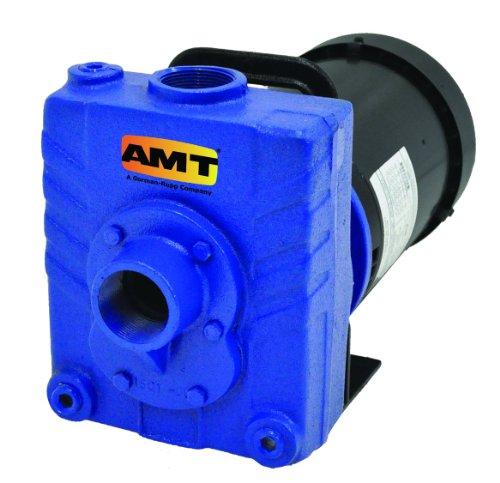 AMT Pump 282C-95 Self-Priming Centrifugal Pump, Cast Iron, 1 HP, 1 Phase, 115/230V,...