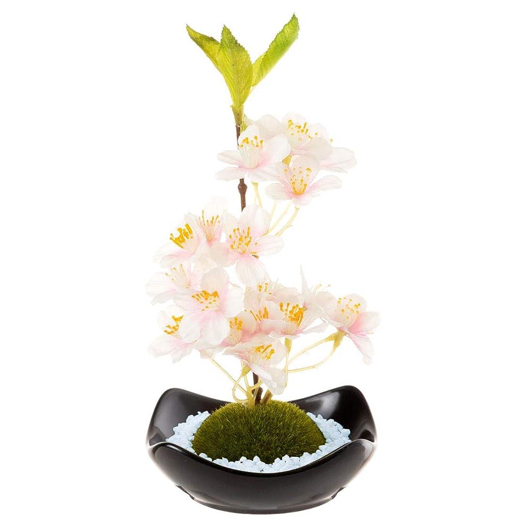 アドバンテージタイムリーな会社苔玉フレグランス桜江戸桜の香りルームフレグランスRoom fragrance