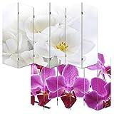 Mendler Foto-Paravent Paravent Raumteiler Trennwand M68~180x240cm, Orchidee