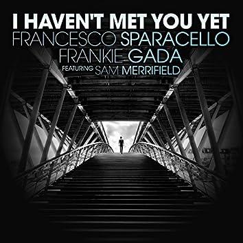 I Haven't Met You Yet (feat. Sam Merrifield)