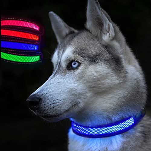 luz collar perro de la marca CEZETO