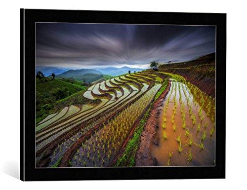Kunst für Alle Cuadro con Marco: Tetra Unseen Rice Field - Impresión...