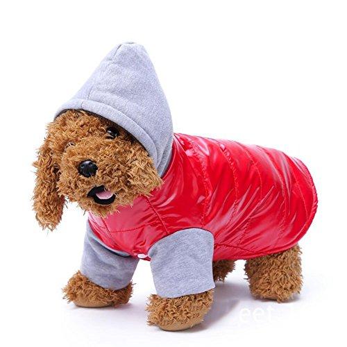 Wodery Puppy Pet Hiver Veste chaude coton chien veste à capuche vêtements chauds gilet pour chien chat