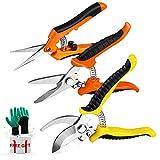 3 Pack Garden Pruning Shears Stainless Steel Blades Handheld Pruners Set with Gardening Gloves