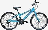 Bicicleta NSTAR 24″