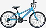 New Star peñalara Bicicleta BTT 24', Niñas, Fucsia, m