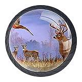 TIKISMILE Knauf für Jagd, Gemälde, Schubladenknauf, ergonomisch, 35 mm, Kristallglas, für Küche, Kommode, Schrank, Kleiderschrank, 4 Stück