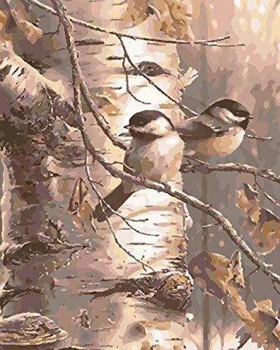 BUFUXINGMA Pintura por Números para Adultos Niños Principiantes Pintar por Numeros Kit con Pinceles y Pinturas DIY Decoraciones para El Hogar, Pájaro En Rama 40 X 50 Cm Marco de Madera