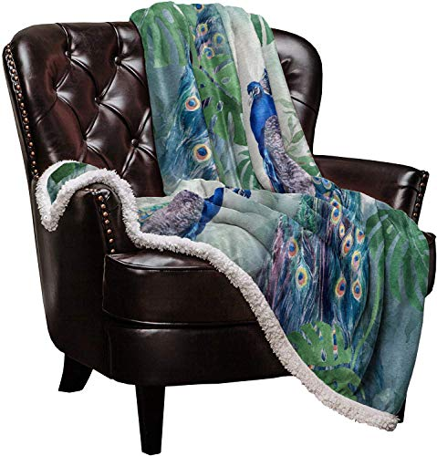 Arts Language Sherpa Fleece Throw Blanket Plush Reversible Blanket for Bed and Couch Peacock Soft Cozy Berber Fleece Bed Blanket for Kids/Adults/Girls/Boys 39x49in