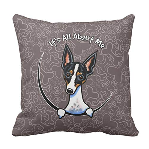 Fundas Cojín Almohada Microfibra 45x45cm Funny Lover Tricolor Rat Terrier Linda Miniatura Decorativa con Cremallera Invisible Funda Cojín