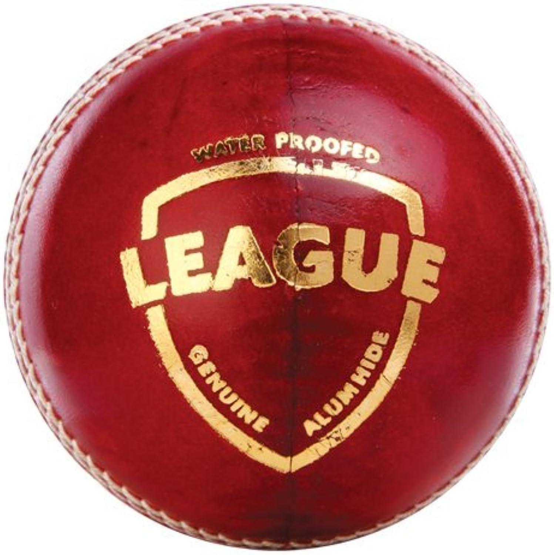 SG League Cricket Ball 100% original Leather Cricket Ball