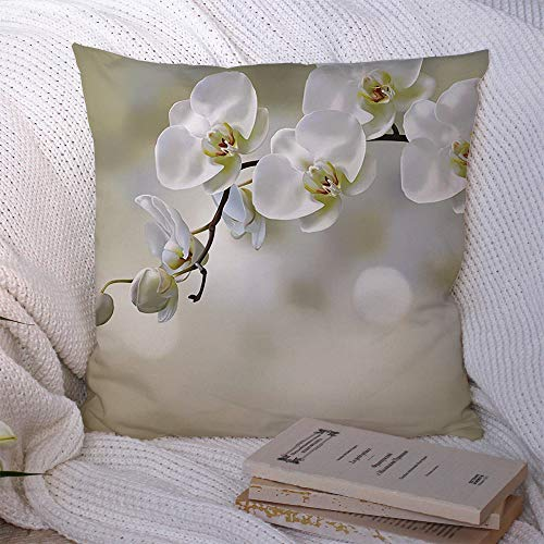 Staromil Pillow Covers Decorative Square Pillowcase Gray White Moon Orchid Flower On Blur Nature Yellow Floral Tropical Beautiful Beauty Bloom Design Soft Cushion Case for Sofa Bedroom Car 20x20 Inch