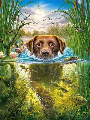 Elsdsnky Malen nach Zahlen für Kinder Erwachsene Anfänger Vorgedruckt Leinwand DIY Ölgemälde mit Acryl-Pigment Geschenkidee Schwimmender Hund Ohne Rahmen 40 * 50 cm
