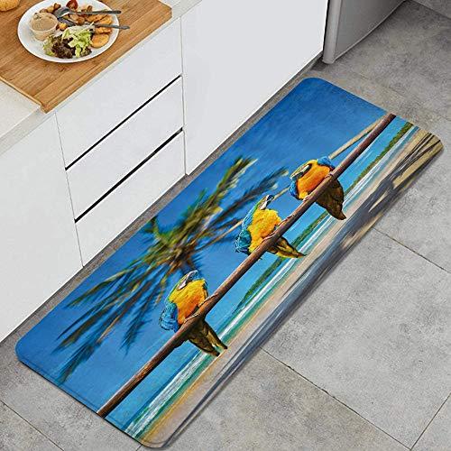 BOKEKANG Alfombra de cocina con diseño de loros hablando entre sí en palo de madera, diseño de animales tropicales, humor, naturaleza, antifatiga, antideslizante, fácil de limpiar