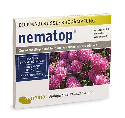 nematop® HB Nematoden zur Bekämpfung des Dickmaulrüsslers - 10 Mio. für 20m²