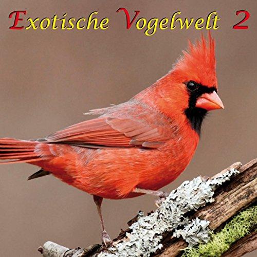 Exotische Vogelwelt 2 Titelbild