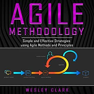 Agile Methodology: Simple and Effective Strategies Using Agile Methods and Principles cover art