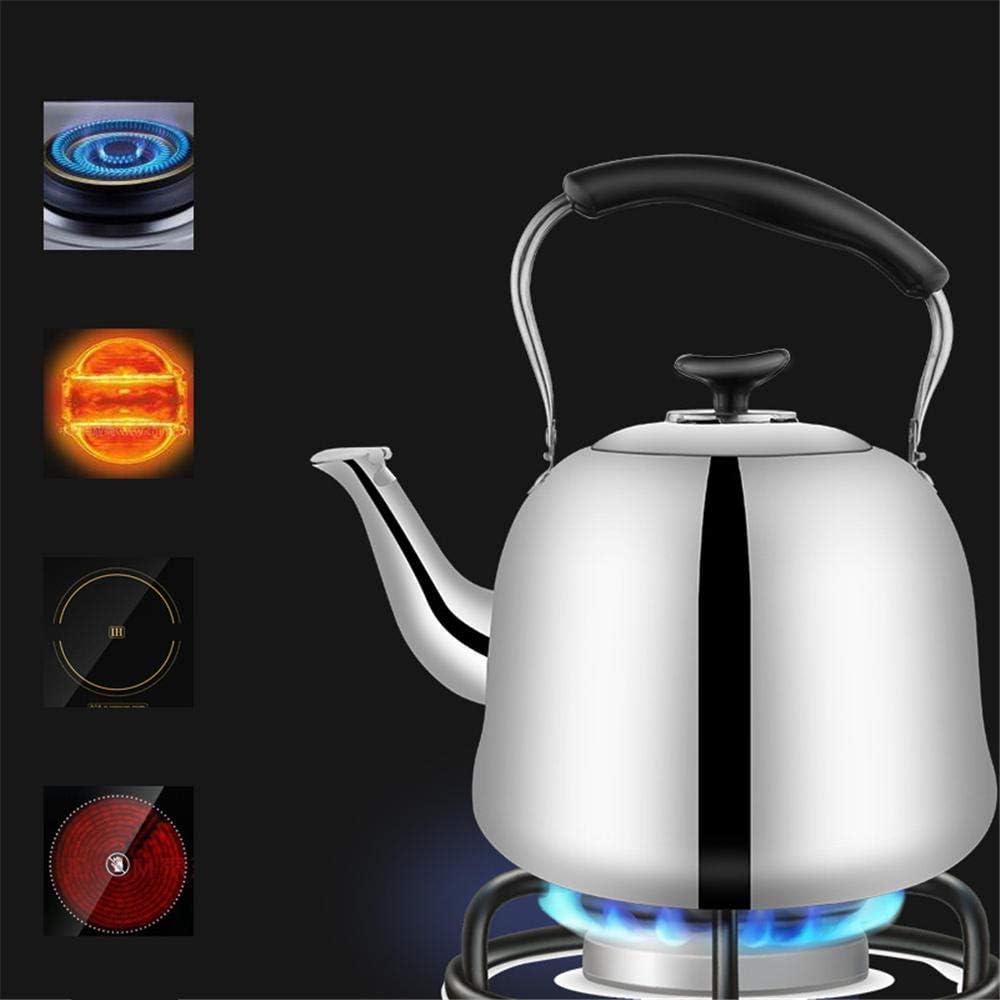 NLRHH Bouilloire en Acier Inoxydable à gaz Cuisinière à Induction Peng (Color : 7l) 2l