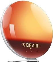 Alarm Clock Wake Up Light, Sunrise/Sunset Simulation, Dual Alarms Bedside Night Lamp with Snooze Function FM Radio 7 Natur...