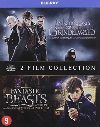 fantastic beasts 2 dvd kruidvat
