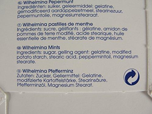 輸入者 フォルトゥン ウィルヘルミナ ミント 100g