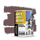 PINTURA ANTIMOHO, evita el moho, resistente a la aparición de moho en paredes, aspecto mate. (750 ML, TABACO)