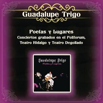 Poetas y Lugares Conciertos Grabados en el Polifórum, Teatro Hidalgo y Teatro Degollado