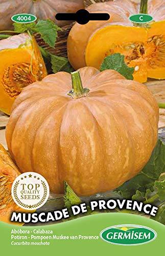 Germisem Muscade de Provence Semillas de Calabaza 3 g