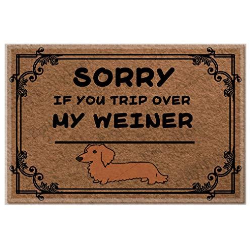 Sorry If You Trip Over My Weiner - Felpudo divertido para interiores y exteriores, 23.6 x 15.7 pulgadas, antideslizante