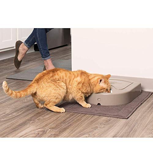 PetSafe Futterreservoir für 5 Mahlzeiten mit Zeitschaltuhr - 4