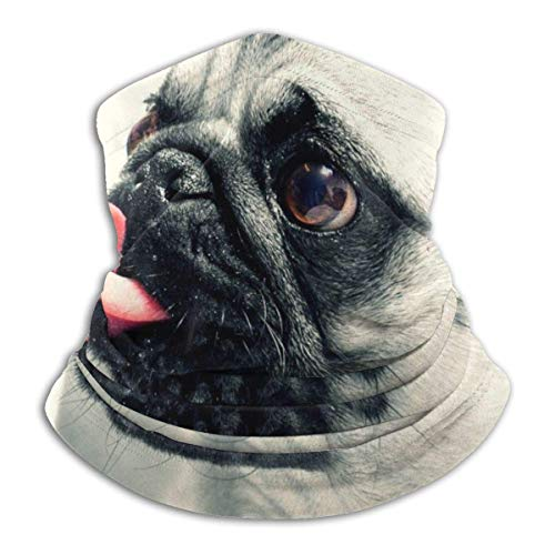 senob Cute English Bulldog Soft Fleece Neck Warmer Pasamontañas Capucha