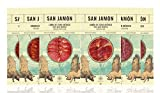 San Jamon Lote Chorizo, Salchichón, Lomo y Jamón Ibéricos Loncheados