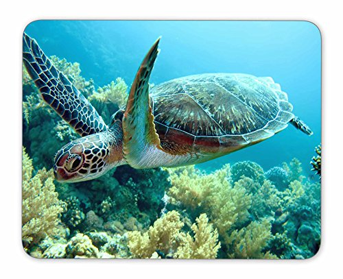 QJ CMJ Green sea Turtle Mouse pad, Natural Rubber Mouse Pad, Quality Creative Wrist-Protected Wristbands Personalized Desk, Mouse Pad (9.5 inch x 7.9 inch)