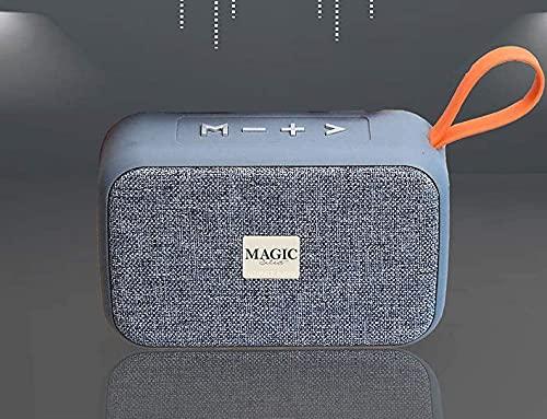 Enceinte connexion Bluetooth 5.0 et Jack 3,5 mm fonction radio FM, lecteur USB, fente pour cartes Micro SD et mains libres (Gris)