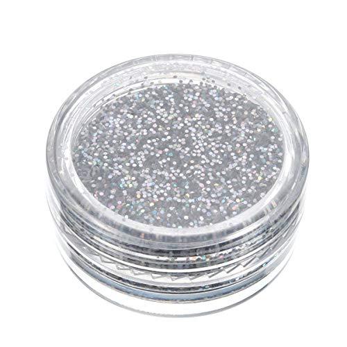 Glitter pour les ongles Silver Glitter Nail Decoration poudre en vrac Ombre à paupières Pigment Sparkly Maquillage 0.4mm 3g, belle