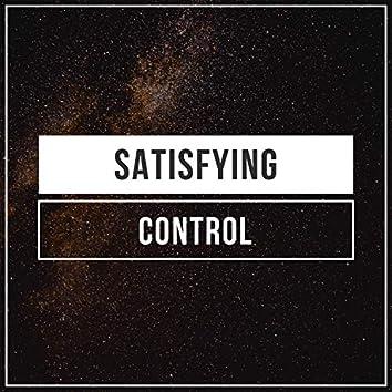 Satisfying Control